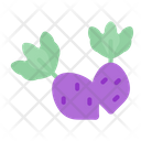 Beetroot Vegetable Healthy Icon