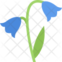Bellflower Ecology Nature Icon