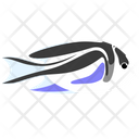 Bellus Angelfish Icon