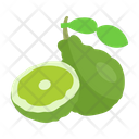 Bergamot Fruit Diet Icon