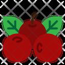 Berries Fruit Cranberries Icon