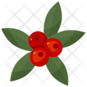 Berries Berry Fruit Icon