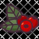 Berries Fruit Berry Icon