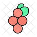 Berries Berry Food Icon