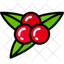 Berries Food Dinner Icon