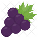 Beautyberry American Fruit Icon