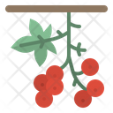 Berry Berries Bouquet Icon
