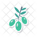 Berry Food Nature Icon