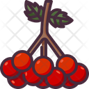 Viburnum Fruit Juicy Vegan Icon