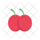 Fruit Delicious Food Icon