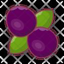 Berry Fruit Cherry Icon