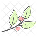 Berry Leaf Branch Icon