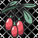 Berry Fruit Goji Icon