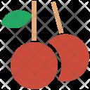 Berry Litchi Fruit Icon