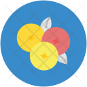 Berry Grapes Bunch Icon