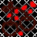 Berrys Icon