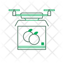 Better Logistic Drone Icon