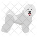 Bichon Frise Icon