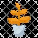 Big plant Icon