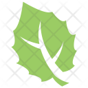 Big tooth Aspen Leaf Icon