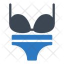 Bikini Lingerie Laundry Icon