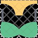 Lingeire Bikini Bra Penty Icon