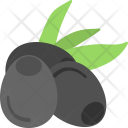 Bilberries Icon