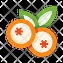 Bilberry Icon