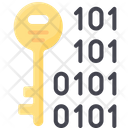 Binary Key Icon