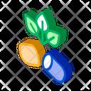 Bio Biocapsule Citrus Icon