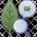 Biology Botany Bio Icon