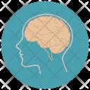 Biology Brain Human Icon