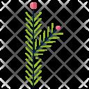 Bipinnate Greenery Leaf Icon