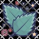 Birch Leaf Icon