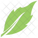 Birch Leaf Icon
