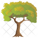 Birch Agriculture Evergreen Icon