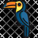 Bird Brazil Parrot Icon