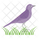 Bird Feather Creature Flying Animal Icon