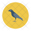 Crow Bird Fly Icon