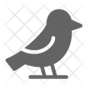 Bird Fly Beak Icon