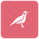 Bird Crow Fly Icon