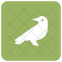 Bird Fly Crow Icon