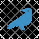 Bird Fly Crow Icon