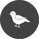 Bird Animal Wildlife Icon