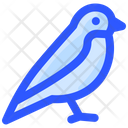 Spring Bird Animal Icon