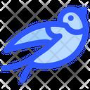 Spring Bird Icon