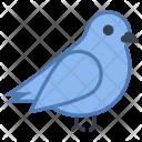 Bird Animal Icon
