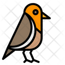 Bird Robin Pet Icon