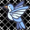 Bird Hummingbird Wildlife Icon