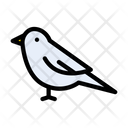 Bird Sparrow Pet Icon